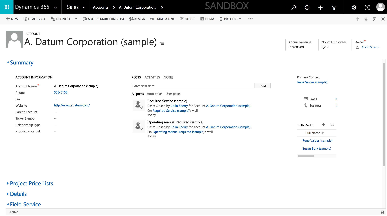 dynamics account detail